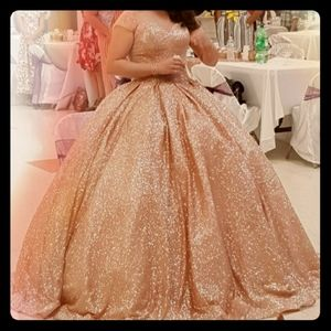 Rose gold Ballgown and ballgown petticoat